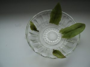цвіточок 2